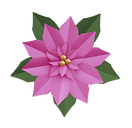 pink-poinsettia_edited.png