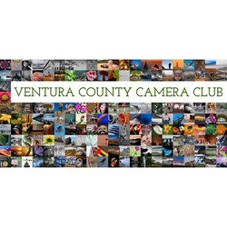 ventura-county-camera-club-cropped-two