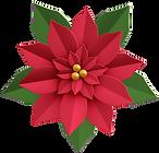shutterstock_683429854-poinsettia-flower