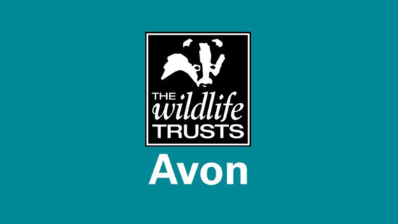 Avon Wildlife Trust logo.jpg