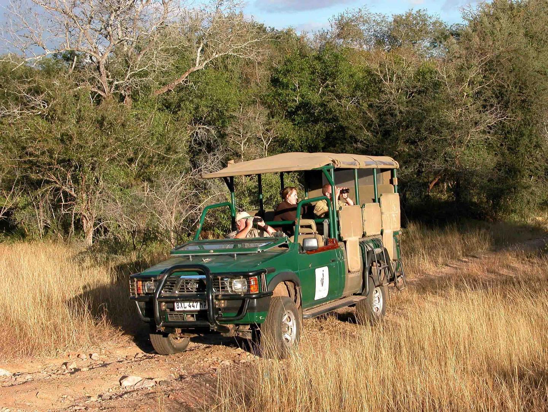Game viewing safari 2.jpg