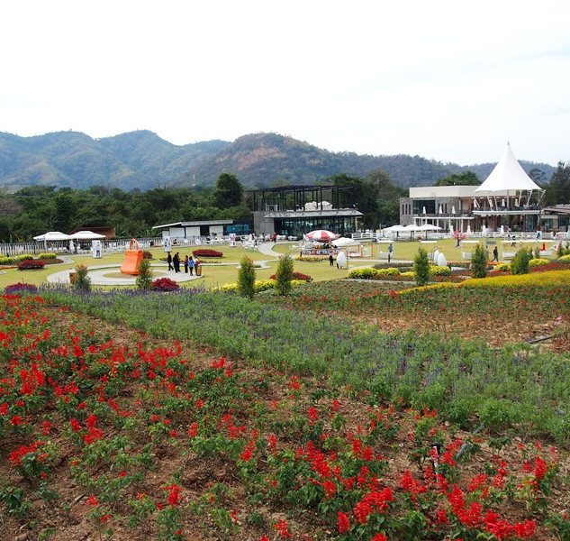 The Bloom Flower Garden
