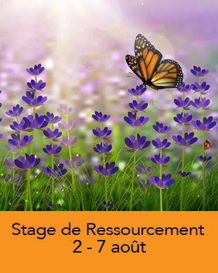 image-container-Site-Martine-ETE21.jpg