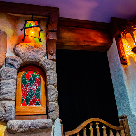 Disneyland Basement 2
