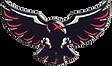 JACKSONVILLE BLACKHAWKS NEW LOGO.png