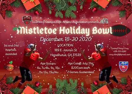 holiday bowl.jpeg
