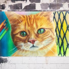 Kuru boya ile İnceltici tekniği - Gerçekçi Kedi Çizimi