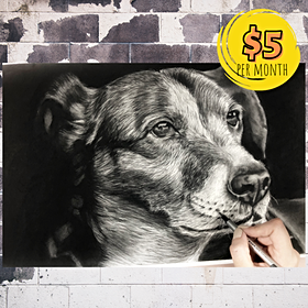Photorealistic Dog Portrait with Charcoal