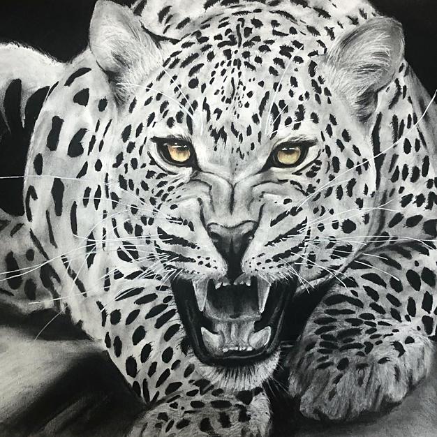 Realistic Leopard Portrait