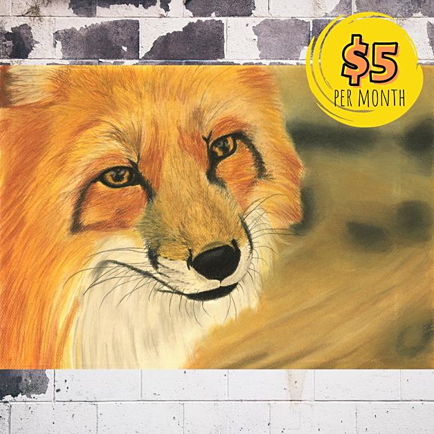A Fox Portrait with Pastels