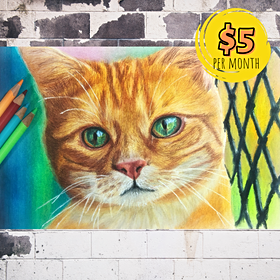 A Realistic Cat Drawing with Solvent