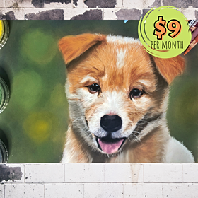 Realistic Dog Portrait with Pastels