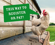 THIS WAY TO PAY.jpg