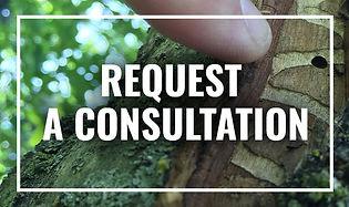 Card-Consultation.jpg