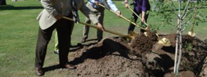 planting-slider-300x112.png