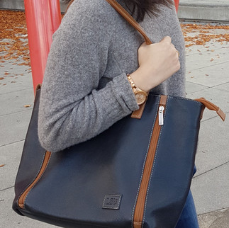 Toronto Leather Handbag and Organizer