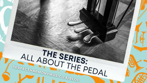 All You Need to Learn about the Piano Pedals