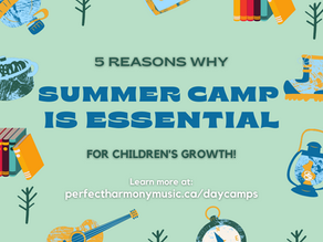 5 Reasons Why going to Day Camps are Essential
