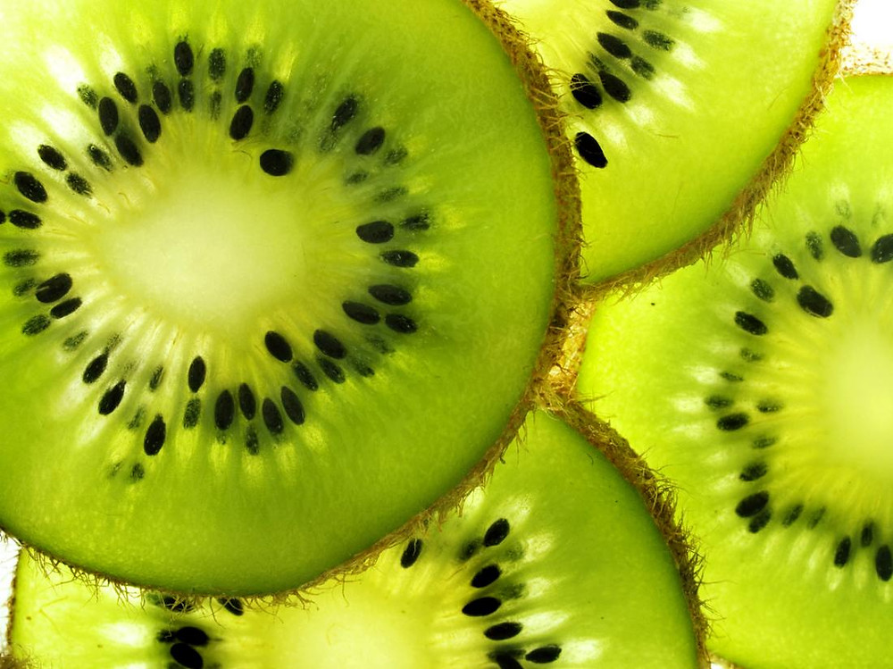 Image result for kiwi
