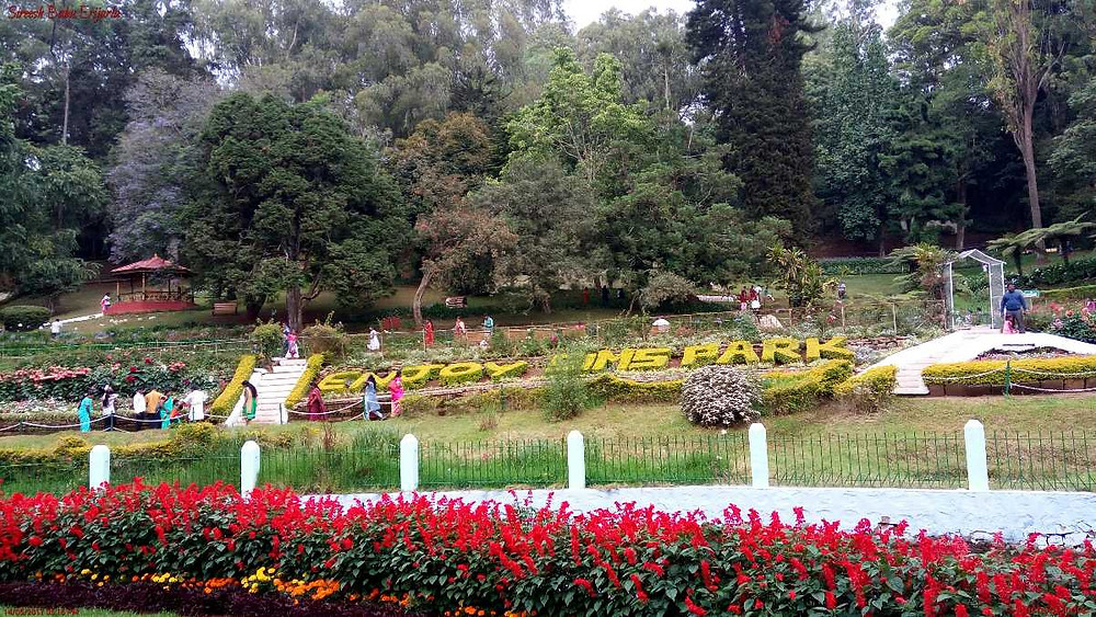 Image result for Sim's Park
