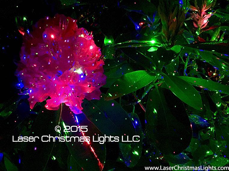 Laser Christmas Lights and Outdoor Laser Lights | Light'em Up Lasers