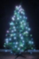 TreeHUE™ - White