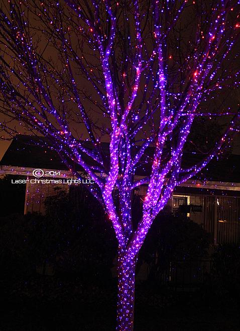 Laser Christmas Lights™ - Gallery