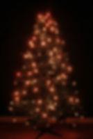 TreeHUE™ - Orange