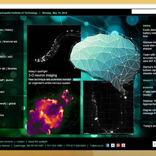 LFM on MIT main website