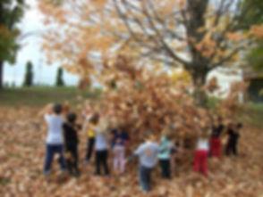 Kids in Leaves.jpg