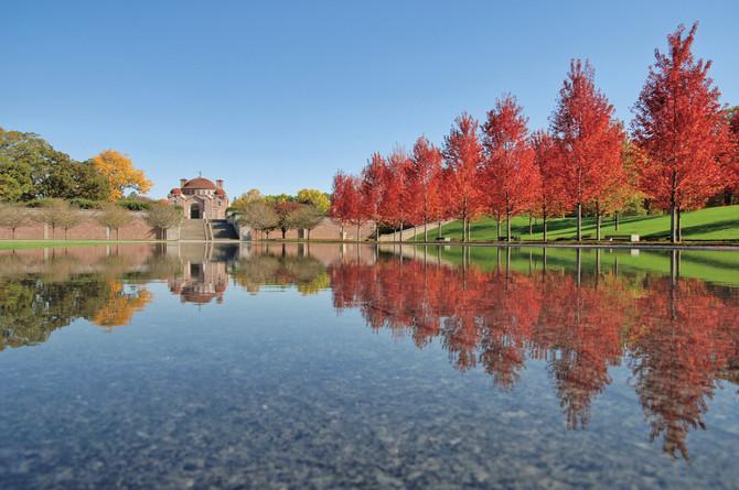 Fall Colors Celebration