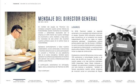 REPORTE DE SOSTENIBILIDAD: THERMION 2020