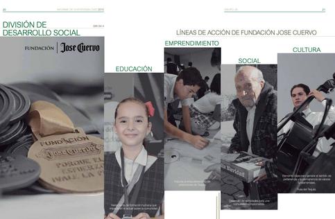 PROYECTO INFORME ANUAL: FUNDACIÓN JOSÉ CUERVO 2017