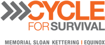CFS2014_Logo_orange_grey.png