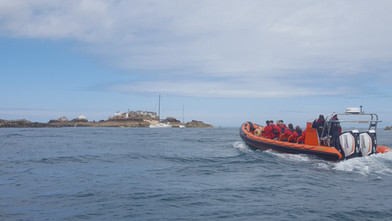 Island Rib Voyages Jersey
