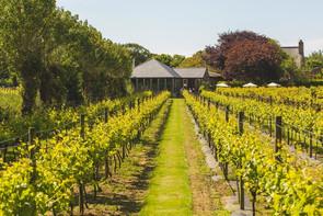 La Mare Wine Estate