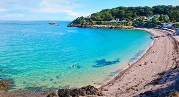Anne Port Jersey