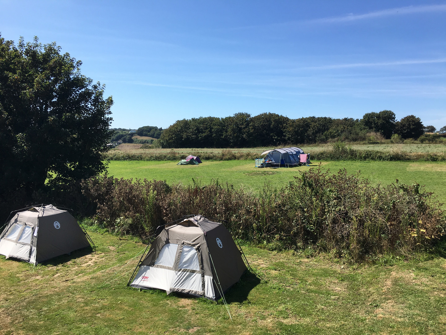 Bay View Camping Field Jersey