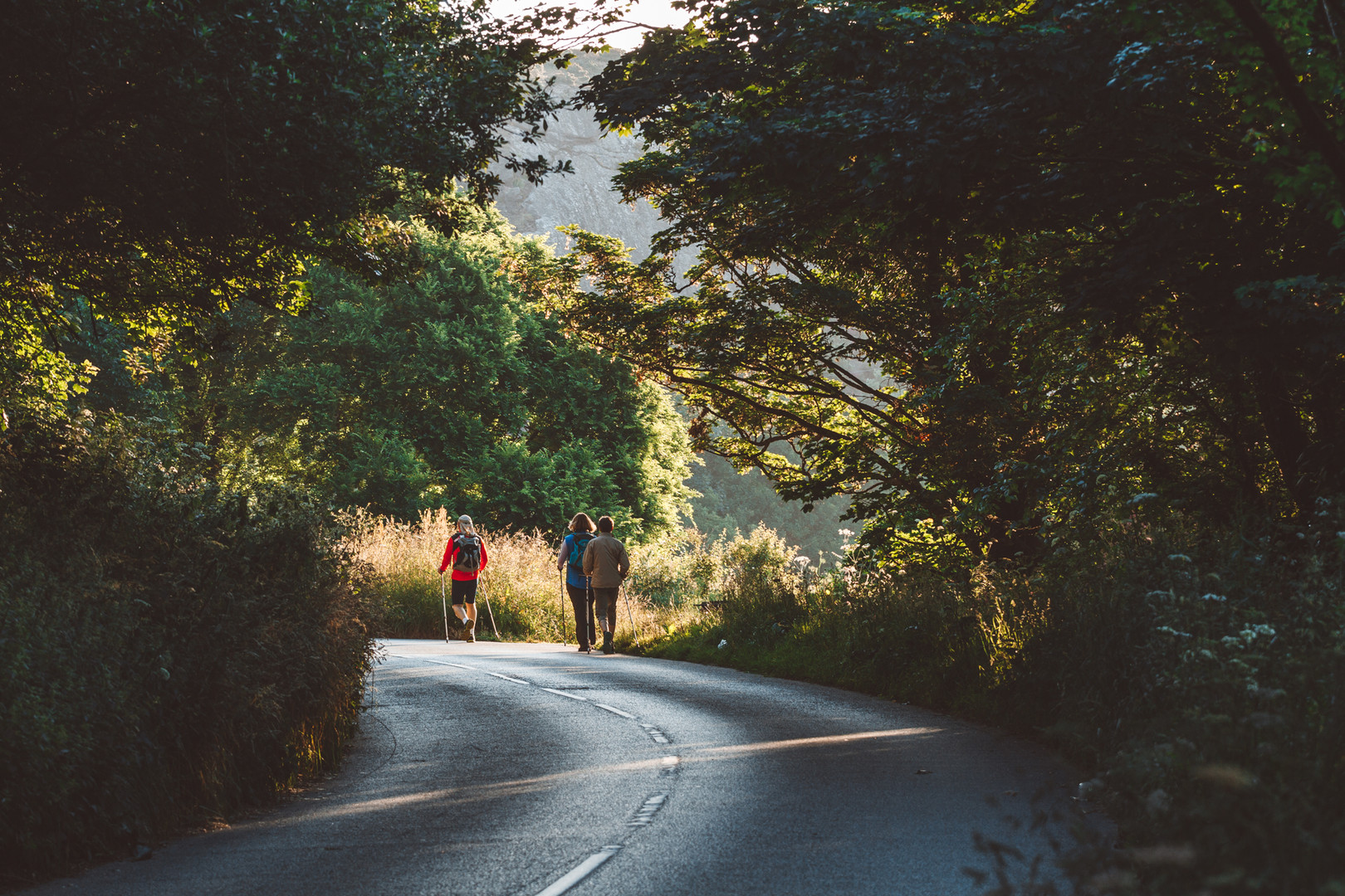 Country lanes Jersey