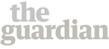 the guardian logo grey.png