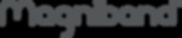 Grey Logo Magniband .png
