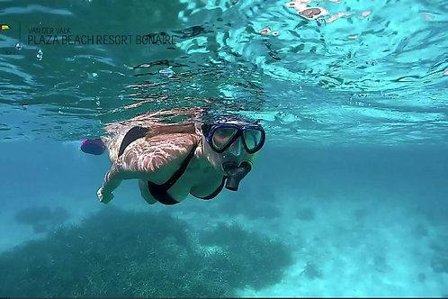 Snorkeling off dive boat