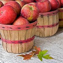 apple-festival.jpg