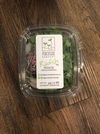Microgreens - Radish