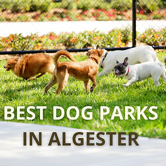 Best Dog Parks in Algester