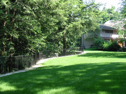 New Lawn above Retaining Wall