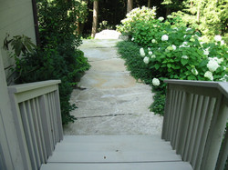 Rear Walk with Hydrangea