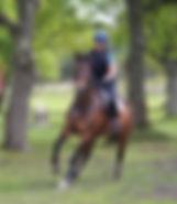 JB Jumping 23.jpg