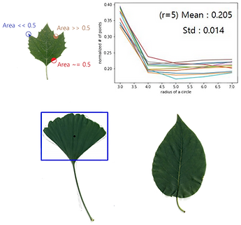 Leaf Analysis