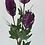Thumbnail: Australian Native Artificial Mini Banksia Flower Stem 68 cm long